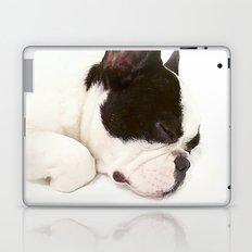 Cute Dogs Laptop & iPad Skin