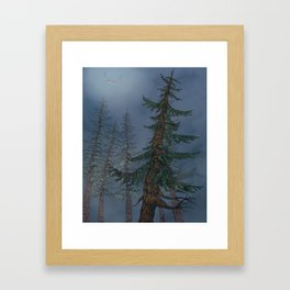 Forest Moonlight Framed Art Print
