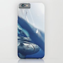 Shark on the Surface iPhone Case