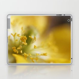 Inside The Poppy Laptop & iPad Skin