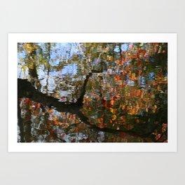 Autumn Reflections.   Art Print
