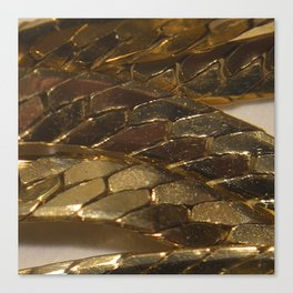 gold? chain Canvas Print