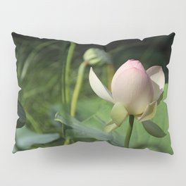 In Delicate Pinks Pillow Sham