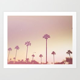 A day in Cali Art Print