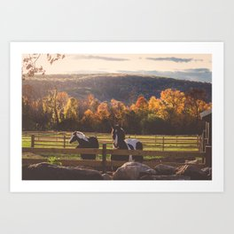 New England Fall Drive Art Print