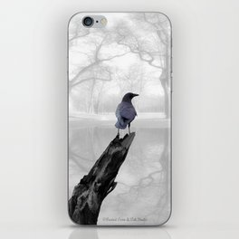 Crow On Misty Pond A114 iPhone Skin