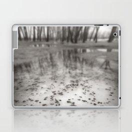 Frozen Laptop & iPad Skin