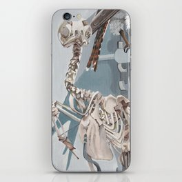 Peregrine Falcon and Kestrels iPhone Skin