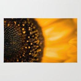 Inside of a Sunflower Rug