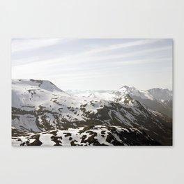 MIO Canvas Print