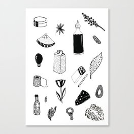things i like on the market Canvas Print
