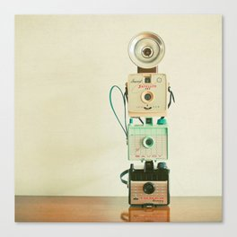 Tower of Cameras Canvas Print