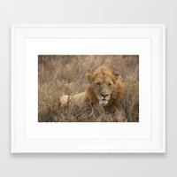big poppa Framed Art Prints featuring Big Poppa by Kevin Lipman