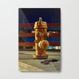 Hydranty Metal Print