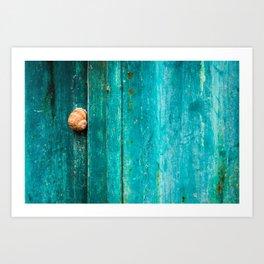 Snail On Aqua Art Print