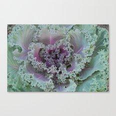 Cabbage Fractal Canvas Print