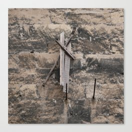 Drift wood on the stone wall Canvas Print