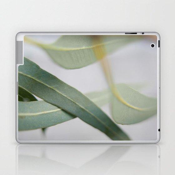 Eucalyptus leaves in the wind Laptop & iPad Skin
