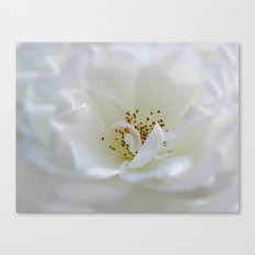 Whispered Secrets Canvas Print