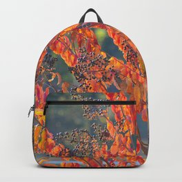 Autumn Colors 3 Backpack