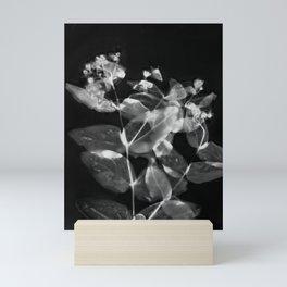 X Ray Blooms Mini Art Print