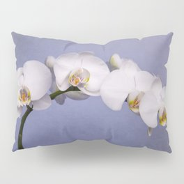 White Moth Orchid Pillow Sham