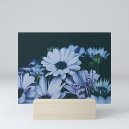 Flower Photography by Echo Grid Mini Art Print