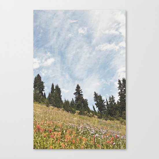 Mountain Flowers in the Sun Canvas Print
