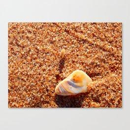 Sand Flea on the Beach Canvas Print