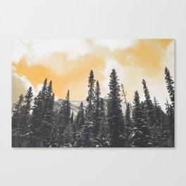 Orange Skys Above the Pines Canvas Print