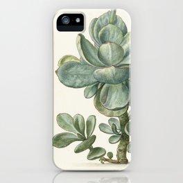 Succulent iPhone Case