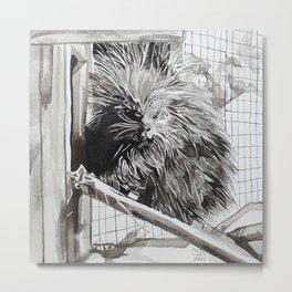 Alaskan Porcupine Metal Print