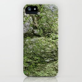 The spring wall iPhone Case