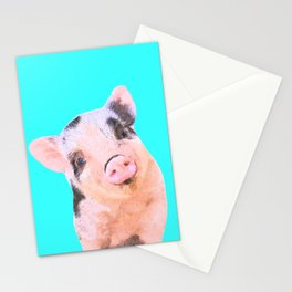 Baby Pig Turquoise Background Stationery Cards