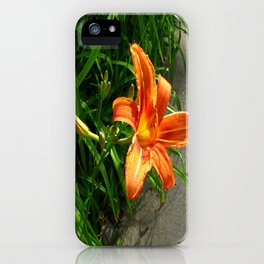 New Buds iPhone Case