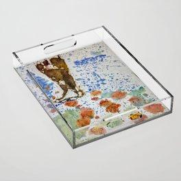 Califia's Journey Acrylic Tray