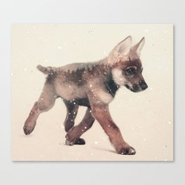 Little Ones: Wolf Canvas Print