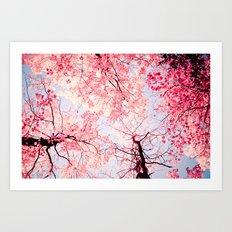 Color Drama I Art Print