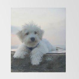 Teddy At Sunset Throw Blanket