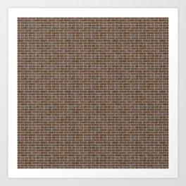 Brown brick Art Print