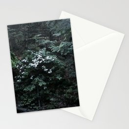 Mountain Laurels Stationery Cards