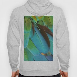 Blue and Green Macaw Feathers Hoody