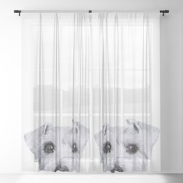 Schnauzer original Dog original painting print Sheer Curtain
