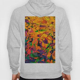 Colorful Abstract Art Hoody