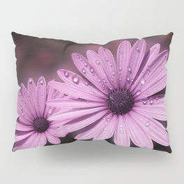 DEW DROPS ON DAISIES Pillow Sham