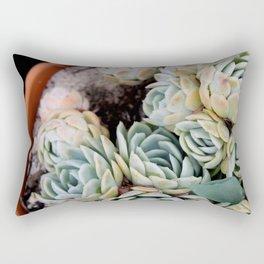 California Potted Succulents Rectangular Pillow