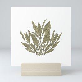 Garden Lovers Illustration/Hand Drawn Plant/Sage Plant/Simple Plant Drawing/Sage Green/Minimal Mini Art Print