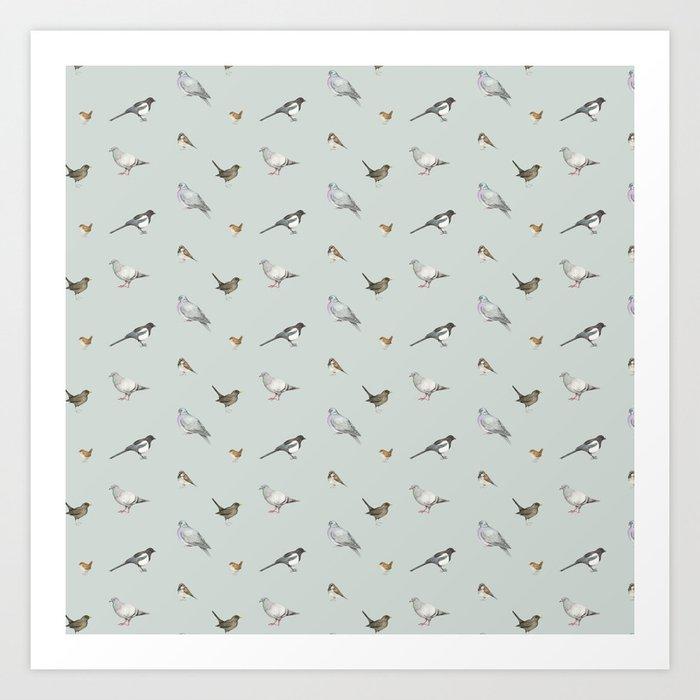 Garden birds Kunstdrucke