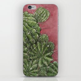 mexican cactus iPhone Skin