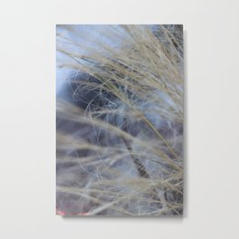 Nature in the French Alps 2 Metal Print